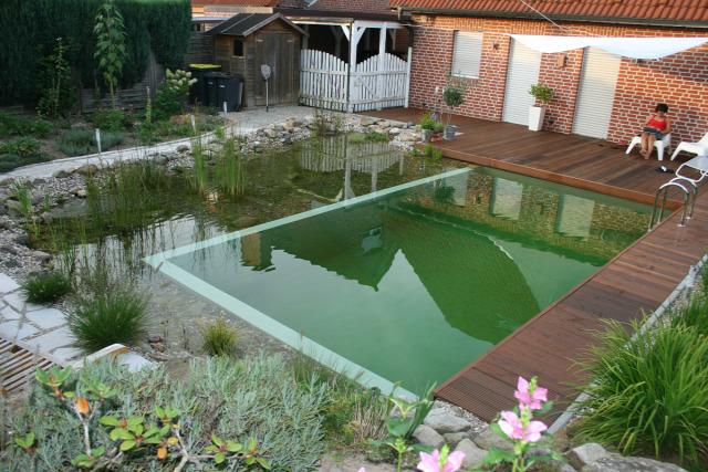 fürdőtó úszómedence vegyszer nélkül kerti tó biológiai víztisztítás