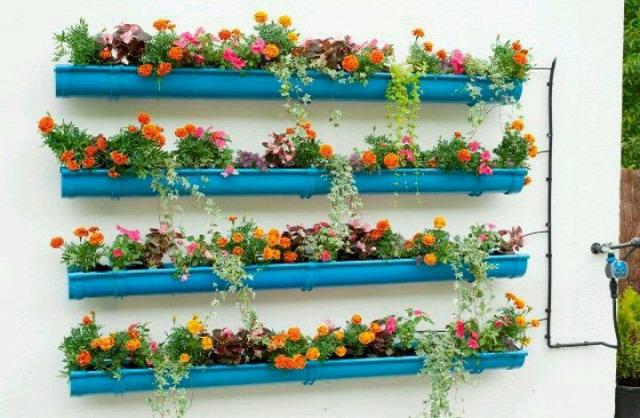 újrahasznosítás ültetés esőcsatornába eper termesztés erkélyen fűszernövények termesztése erkélyen eper