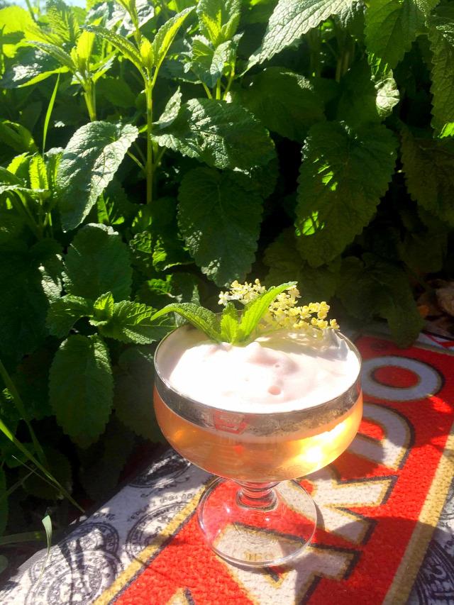 receptúra diaego world class gin tanqueray horváth lajos