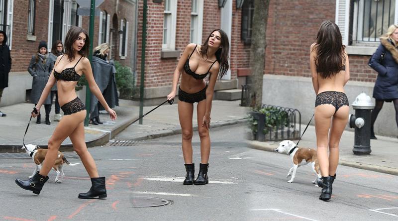 Emily Ratajkowski DKNY kutya