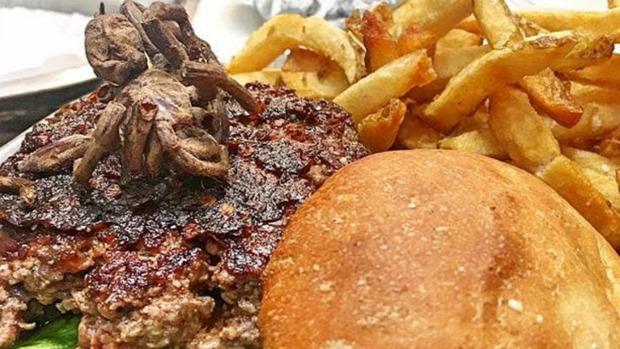 egzotikus tarantulű tarantula pók burger