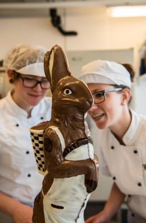 csoki nyúl húsvét óriás