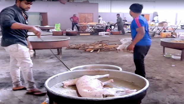 videó street food Tamil kecske ürü