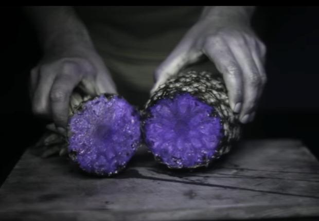 videó gyülölcs UV fény