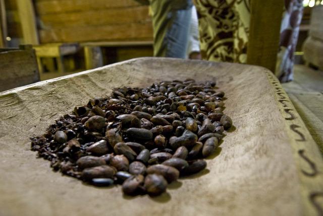 kakaó kakaóbab csokoládé kakaóvaj csoki ár