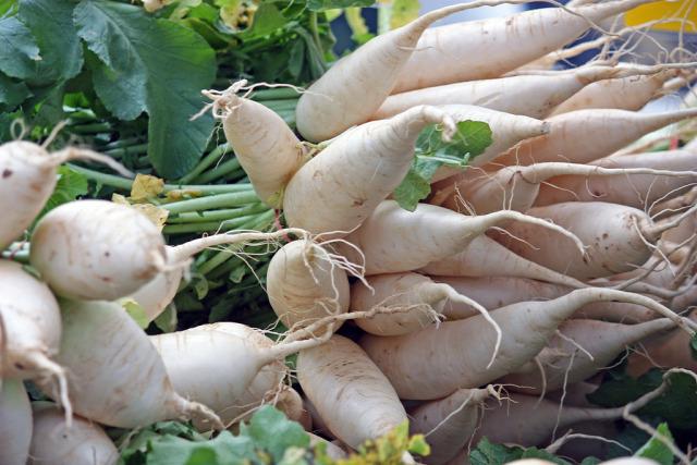 daikon gyökérzöldség téli vitaminforrás recept jégcsapretek maki stevenson fehér retek japán retek saláta ázsiai étel japán konyha