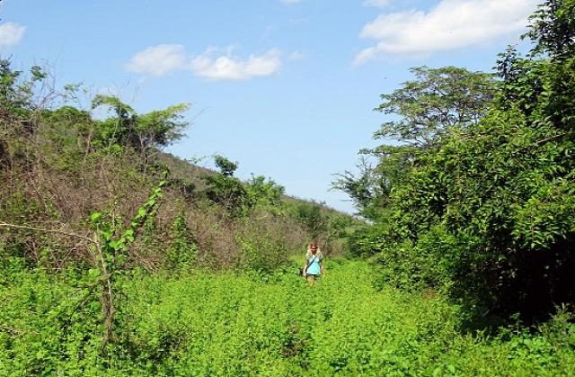 El Salvador Usulután Alegría San Miguel Quelepa