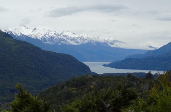 Los Alerces Nemzeti Park