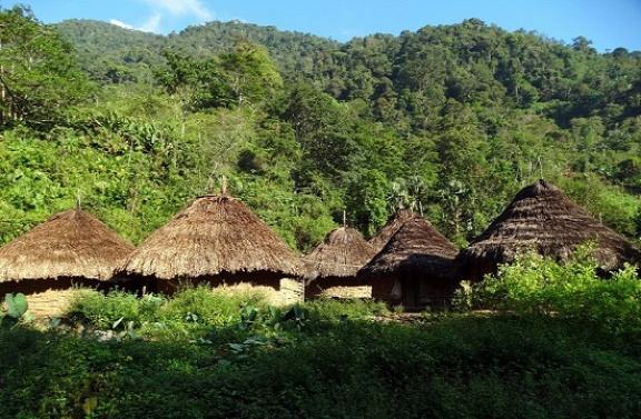 Muthanzi faluja