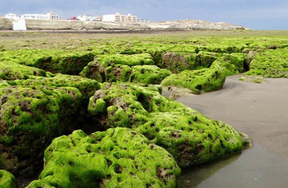 Las Grutas Argentína legdélebbi nyaralóhelye