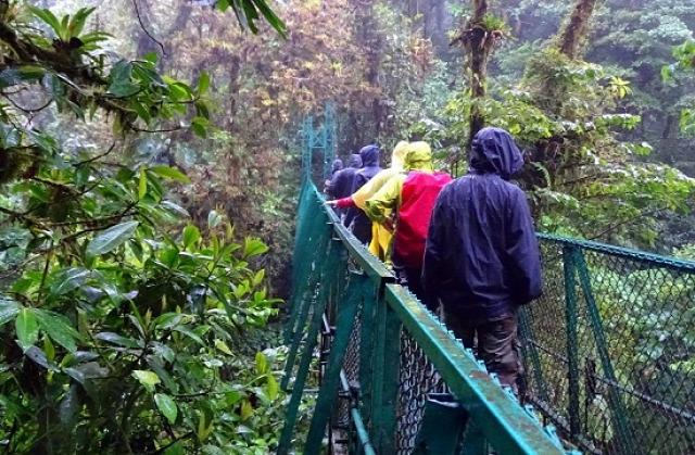 Quetzal helyett csapatkép a Selvaturában