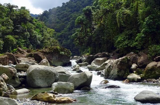 Costa Rica Cartago Tapantí Nemzeti Park