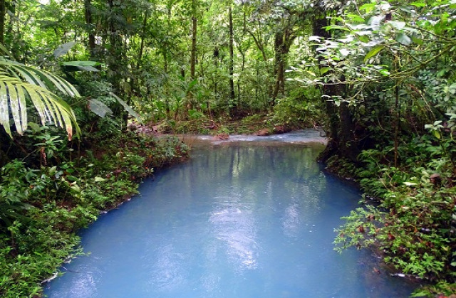 Costa Rica Puntarenas Rio Celeste Tenorio Nemzeti Park