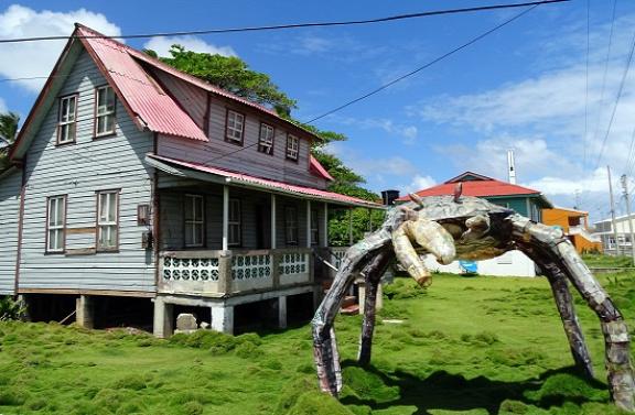 Karibi ház és hulladék rák