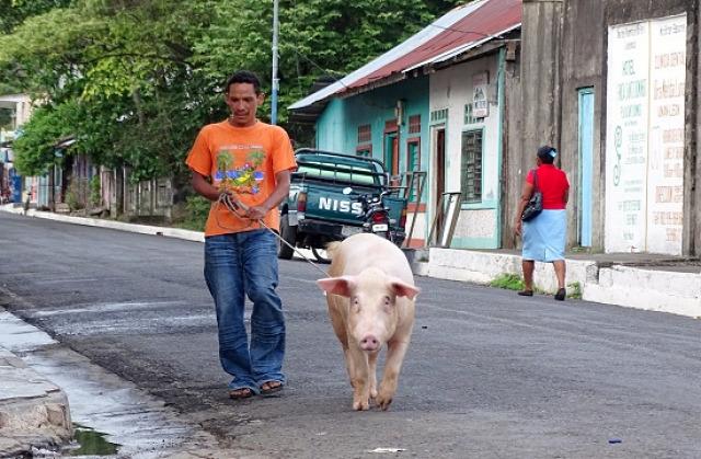 Costa Rica Nicaragua San Juan del Sur Isla Ometepe