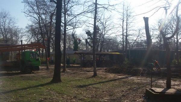 városliget liget projekt múzeumi negyed zene háza fakivágás városliget 2016