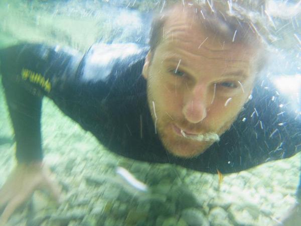 swimathon 2016 úszás kampány adománygyűjtés közösségi ügyek