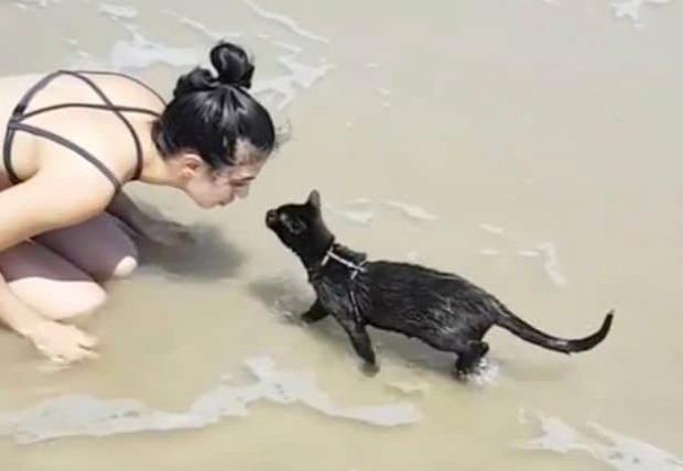 tenger úszás