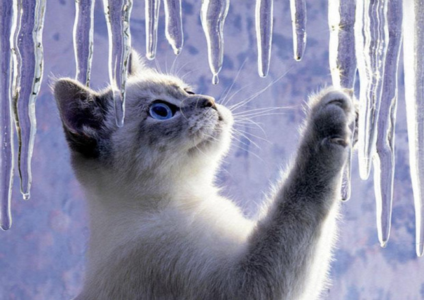 tél hó jég