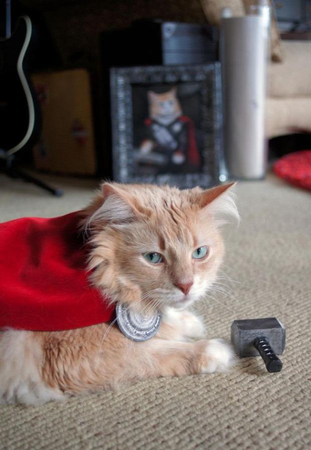 Thor isten