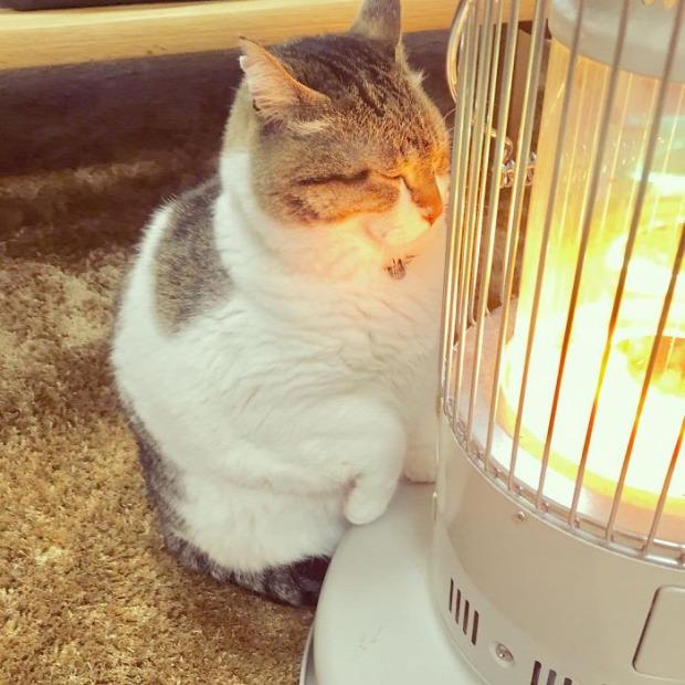 Tokió hősugárzó totem Isten