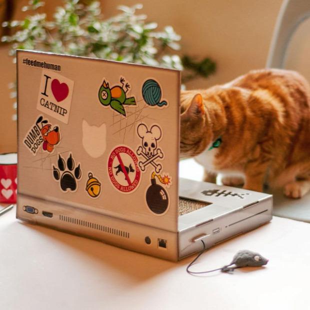 laptop játék