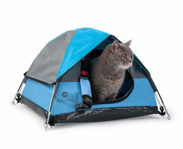 macskabarlang sátor