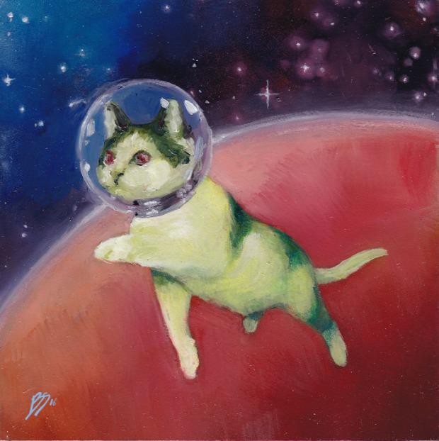 űrhajós űr macska