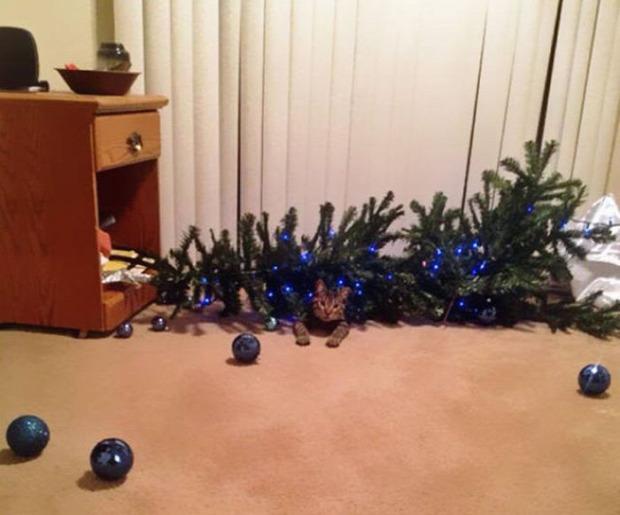 karácsony karácsonyfa baleset