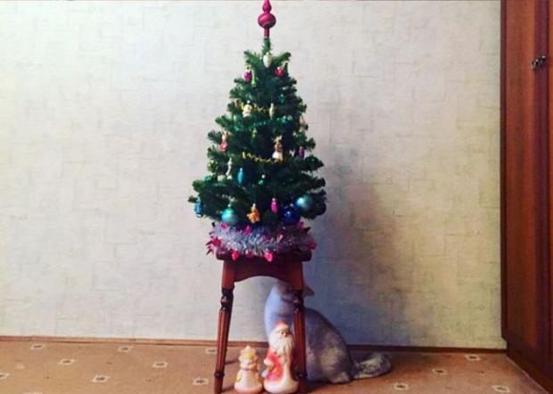 karácsonyfa baleset