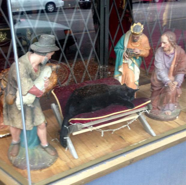 Karácsony Betlehem jászol