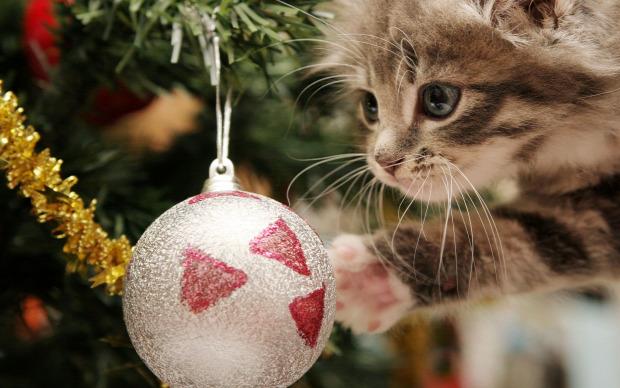 karácsony dísz gömb