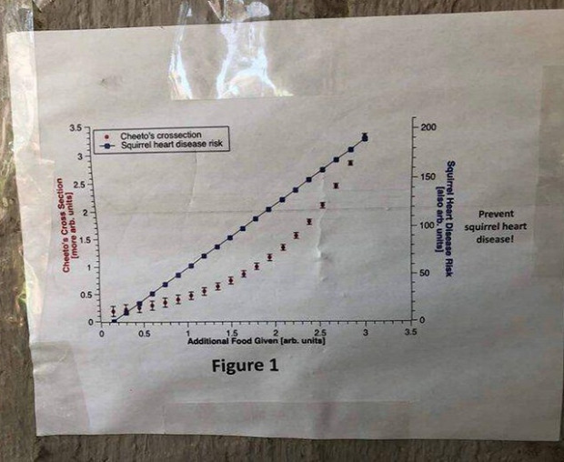 kövér dagadt túlsúlyos grafika etetés kérés egyetem diák