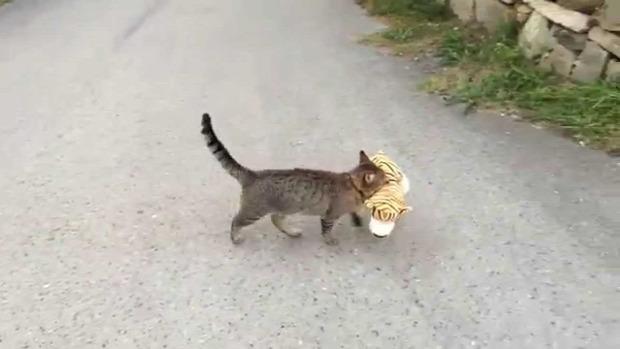 plüss tigris vadász