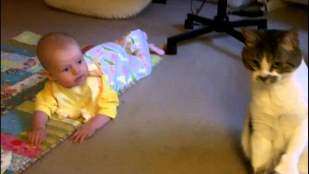 bébiszitter baba testőr