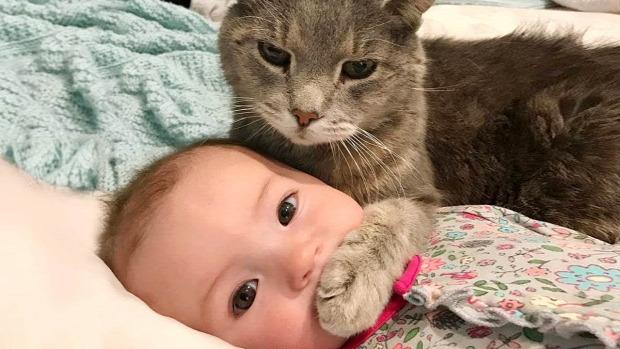 baba csecsemő