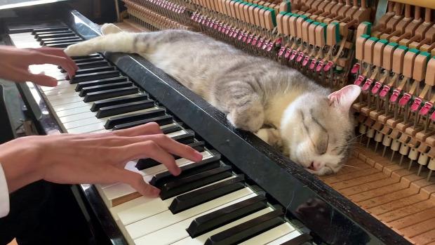 altató zene zongora