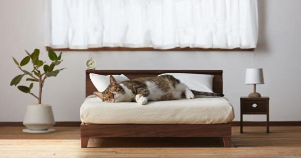 bútor ágy