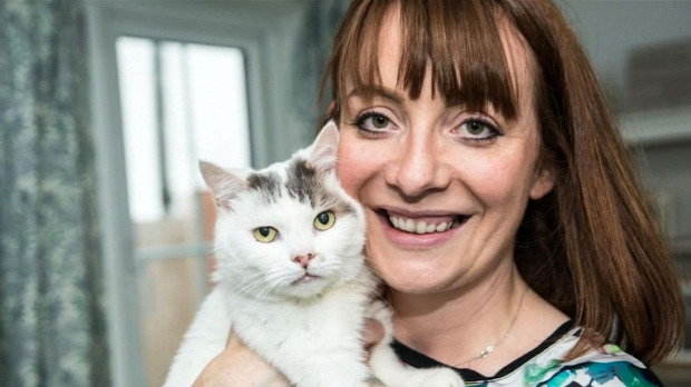 díj év macskája theo életmentő