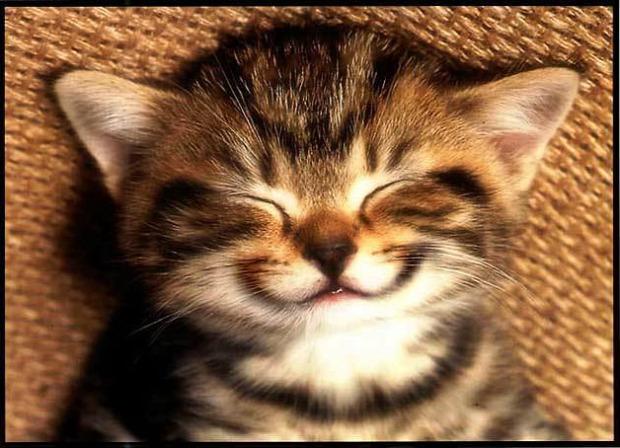 mosoly nevetés