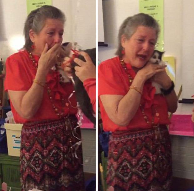 Texas  középiskola tanár ajándék cica