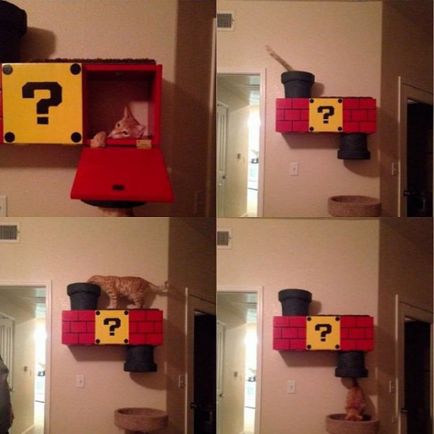 macskafészek játék super mario
