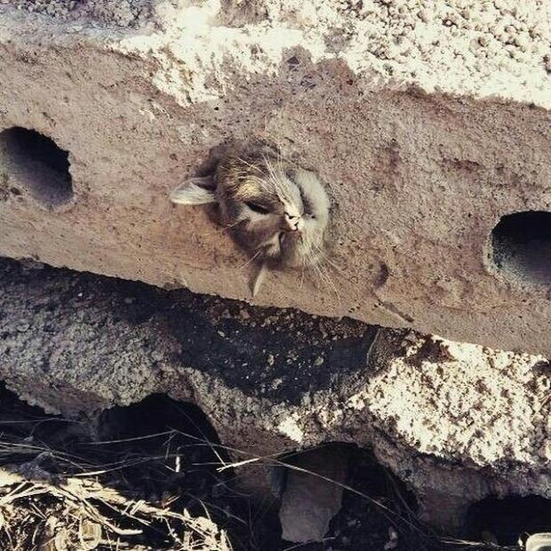 mentés munkás szorul beton lyuk