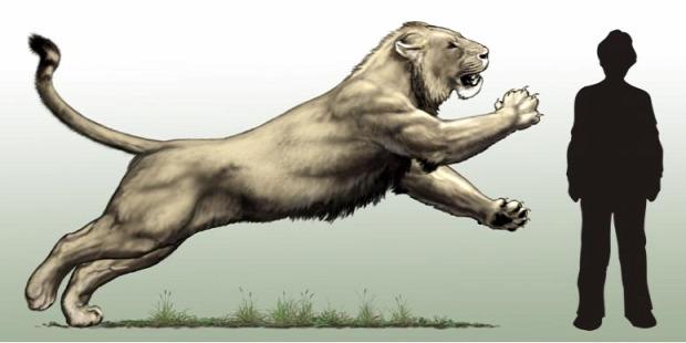 barlangi oroszlán lelet csont Szibéria