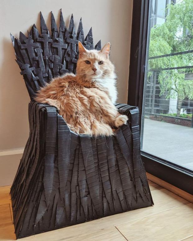 Arthur maine coon trón trónok harca vastrón fekhely ágy