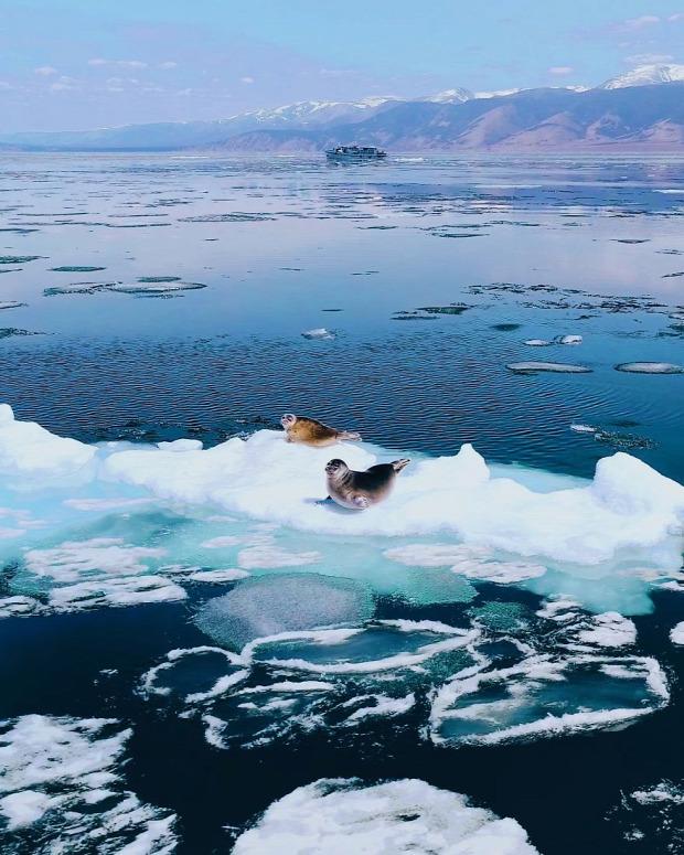 A világ érdekes Bajkál-tó jég kajak fóka