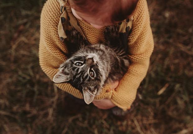 gyerek állat fotó