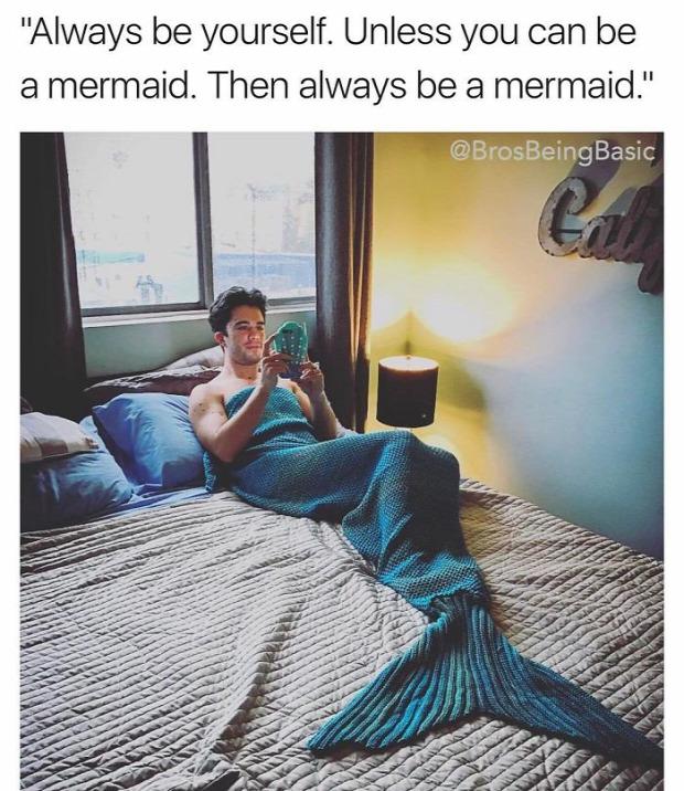 Isten állatkertje Ashley Haseltine komikus instagram trend