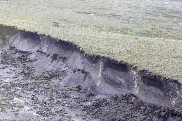 járvány betegség nílusi-láz permafrost