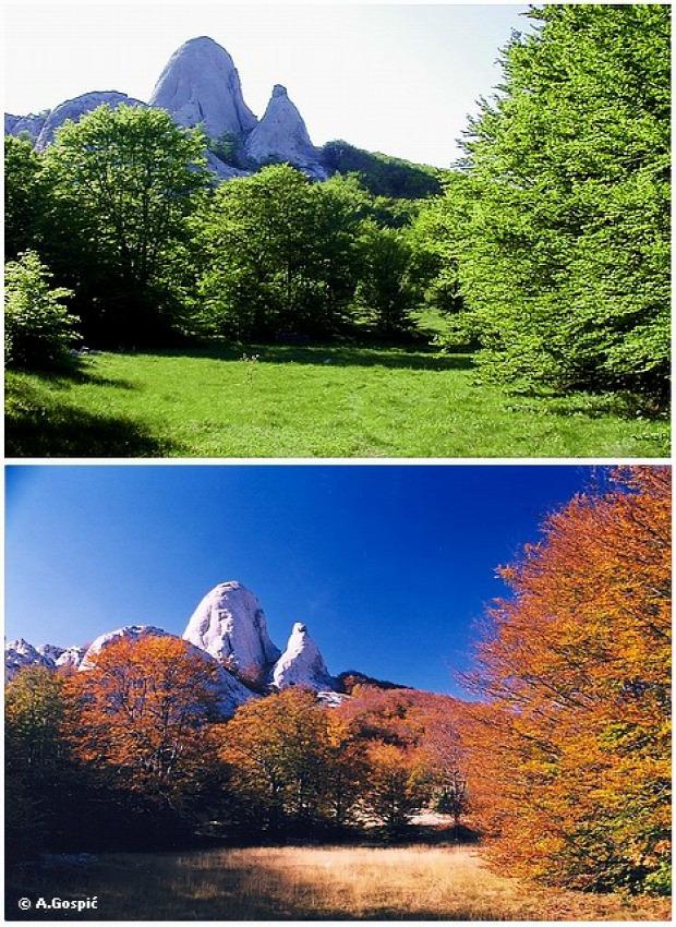 A világ érdekes ősz vidék színek természet